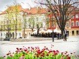 Apartament WALOWA - Centrum - Warszawa - Polska